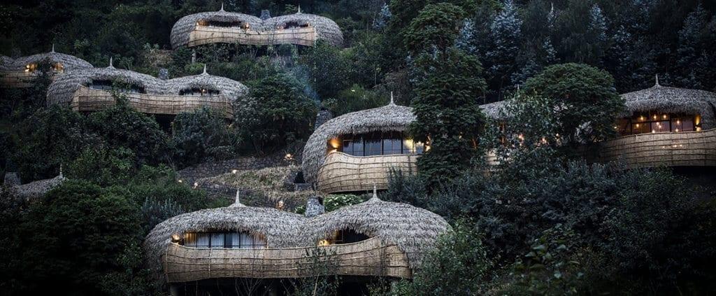 Alojamiento | Gorilas de Montaña | Viajes Planeta Azul