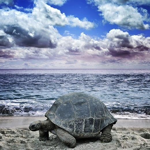 Galapagos Islands | Viajes Planeta Azul