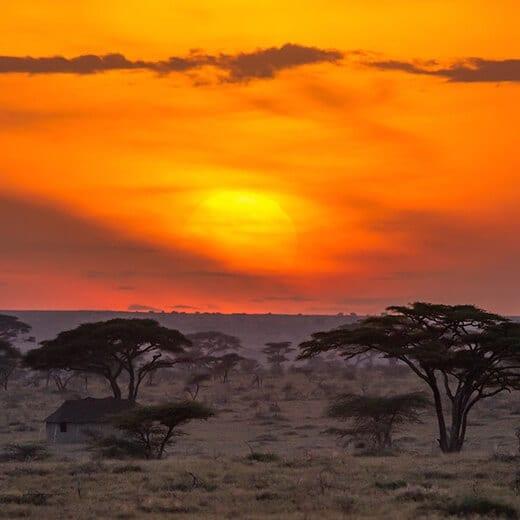 Memorias de África | Viajes Planeta Azul