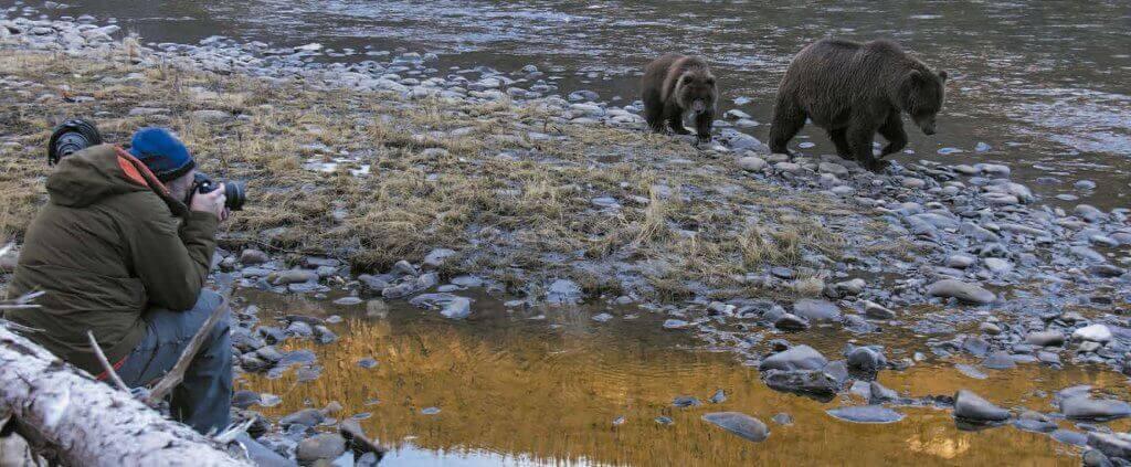 Bear Country | Bear Country | Viajes Planeta Azul