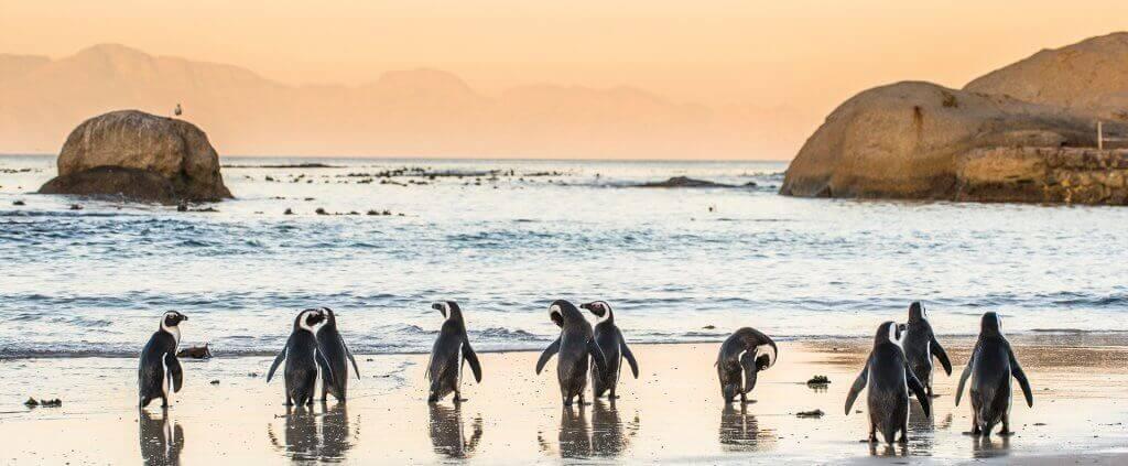 South Africa | South Africa | Viajes Planeta Azul